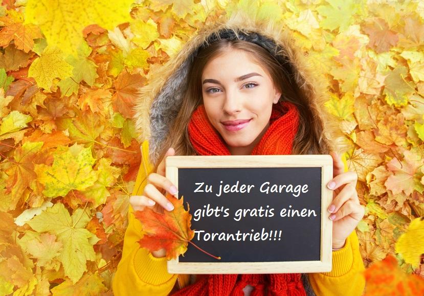 Bild Herbst Aktion Garage mit Torantrieb